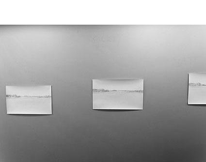 Три точки зору на спільне поле та три можливості його придбати/Three points of view on common field and three possibilities to own it